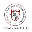 CINTA SENESE