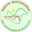 TERRE AURUNCHE
