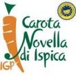 CAROTA NOVELLA DI ISPICA