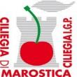 CILIEGIA DI MAROSTICA