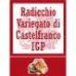 RADICCHIO VARIEGATO  DI CASTELFRANCO: